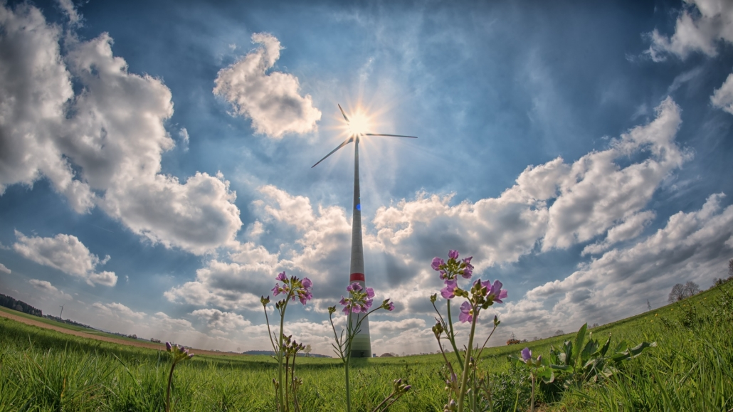 Windrad in der Sonne auf grüner Wiese